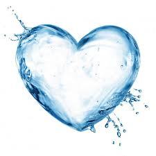 srdce zvody
